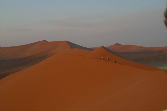 Namib-Naukluft Park, Namibië: Dune 45 Sunrise Hike