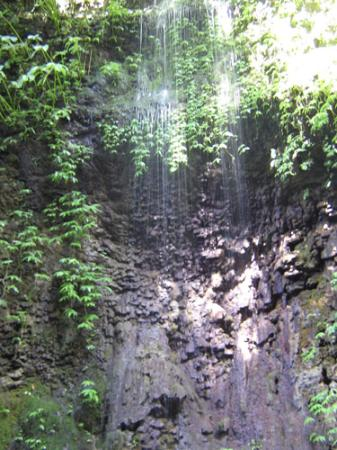 Gitgit Waterfall: Gitgit twin waterfall