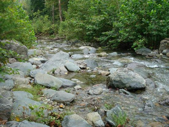 The Inn at Sugar Hollow Farm: stream nearby with fishing