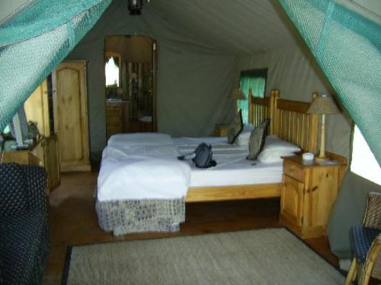 Golden Leopard Resort - Bakgatla: Looking into the tent