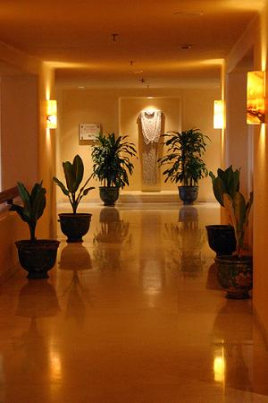 Four Seasons Resort Punta Mita: Hallway off main lobby