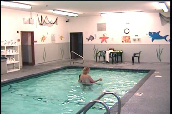 Quality Inn and Suites Davenport: The pool area with wall art (imaged from my camcorder)