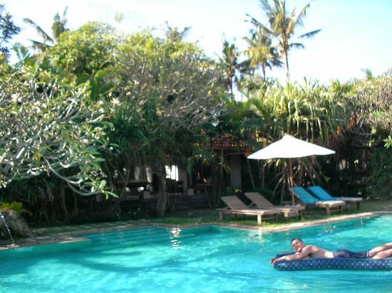 Natah Bale Villa: Pool