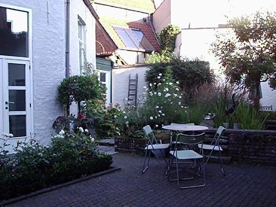 Absoluut Verhulst: The garden outside the breakfast room