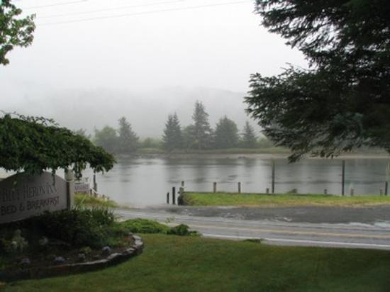 Blue Heron Inn: rainy but beautiful day