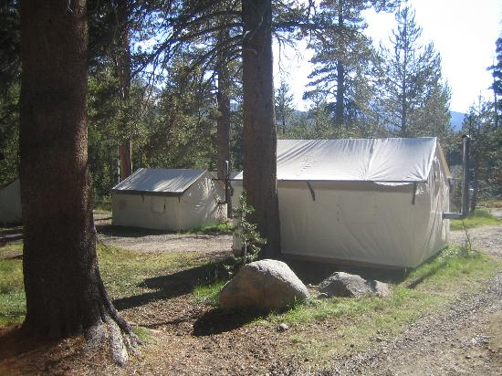 Tuolumne Meadows Lodge : Overview of part of the tent cabin area