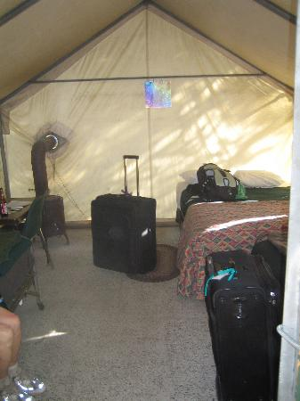 Tuolumne Meadows Lodge Interior of tent cabin & Interior of tent cabin - Picture of Tuolumne Meadows Lodge ...