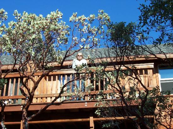 Evergreen Lodge at Yosemite : Irene on the deck overlooking the forest