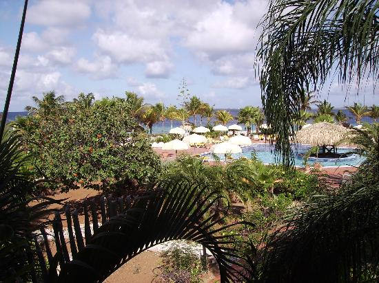 Bonaire: View from the room