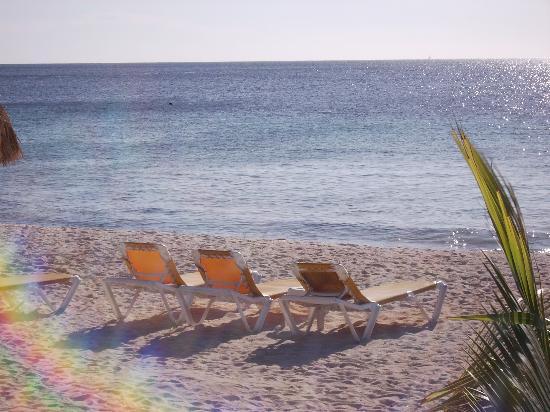 Bonaire: The Plaza Beach
