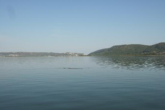 The St. James of Knysna: The Lagoon and The Heads, seen from the Garden