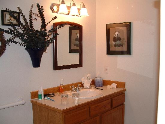 All Seasons River Inn: Bathroom viw 1