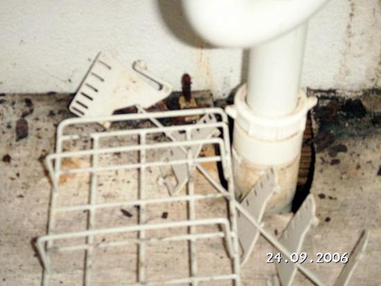 Hotel Versalles : mould under bathroom sink
