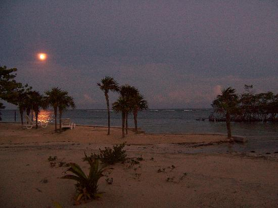 Barefoot Cay Resort: Moonlight over the cay