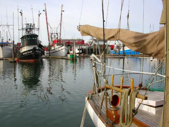 Inn at Harbour Village : Walking the docks in Ilwaco
