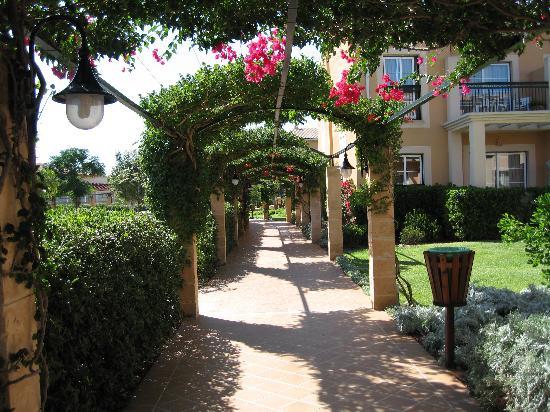 Zafiro Menorca: part of the well kept exterior