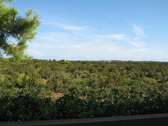 Zafiro Menorca: view from balcony/terrace