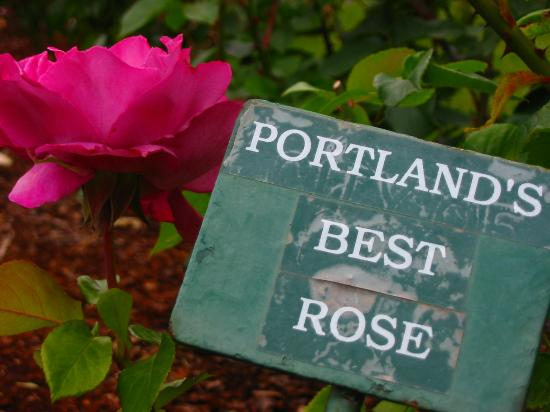 ‪International Rose Test Garden‬