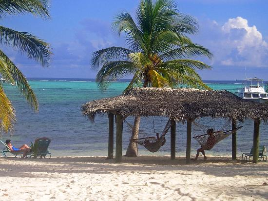 Little Cayman Beach Resort Image