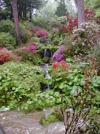Bodnant Garden: Beautiful even in the rain