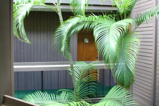 Hale Hui Kai Condominium: Unit 208 Front Door and Complex Interior