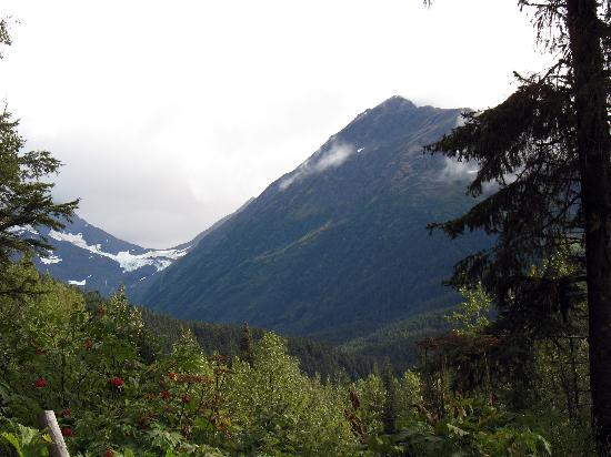 Girdwood Photo