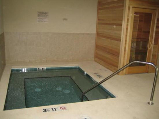 Country Inn & Suites By Carlson, Brunswick I-95 : Jacuzzi And Sauna