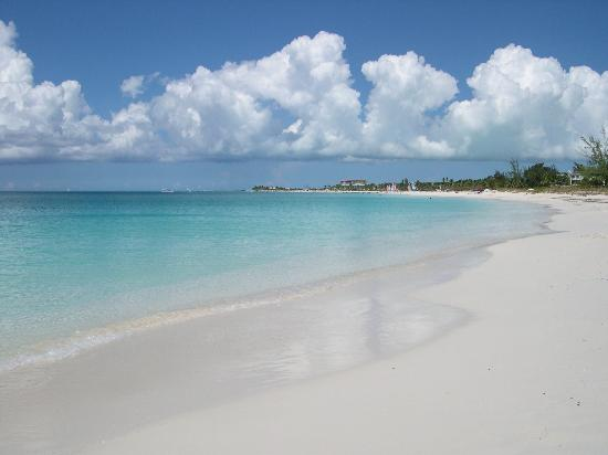 Grace Bay Club : Grace Bay Beach