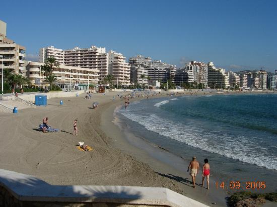 AR Roca Esmeralda & SPA Hotel: The sea front beach