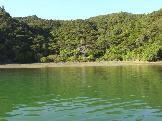 Northern arm of the Whangaroa Harbour