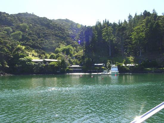 Whangaroa Harbour: Kingfisher Lodge- Famous NZ game fishing lodge