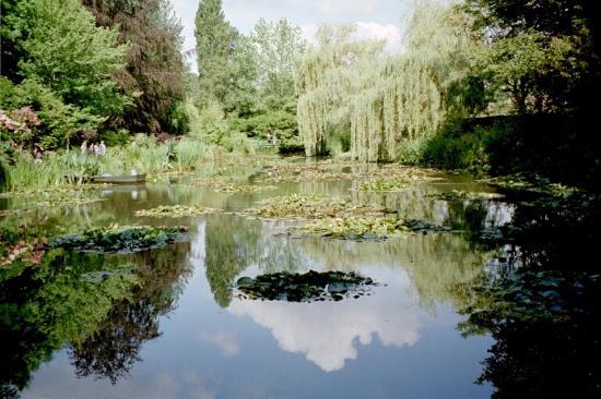 Monet-museet i Giverny: The Pond