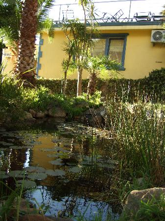 Ocean View House: Garden Pond
