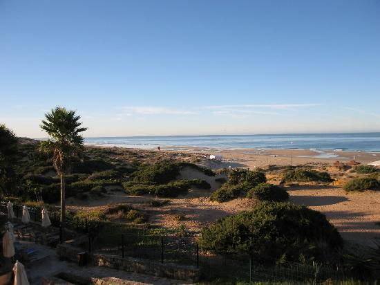 Hipotels Barrosa Palace Hotel: View from hotel room