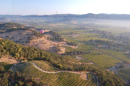 Balloons Above the Valley: View from Balloon