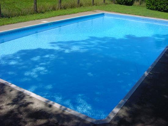Dalem's Chalet: Pool