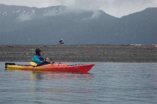 Otter Cove Resort: Eagles were fishing too.