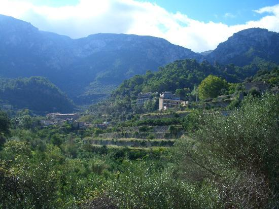A typcial view in Deia