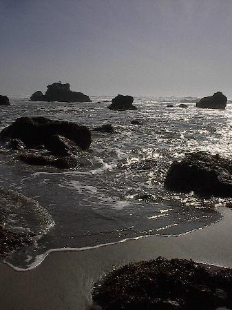 Bodega Bay, Californien: A Walk on the beach
