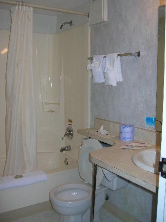 Econo Lodge Inn & Suites - Plattsburgh: Bathroom