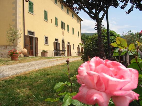 Sansepolcro, Italy: Veduta esterna