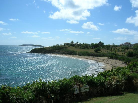 The Buccaneer St Croix: Whistle Beach with Buck Island in the distance