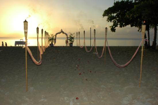 Coral Seas Garden: View of the wedding setup