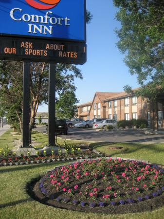 Comfort Inn Airport: Classic view of this hotel