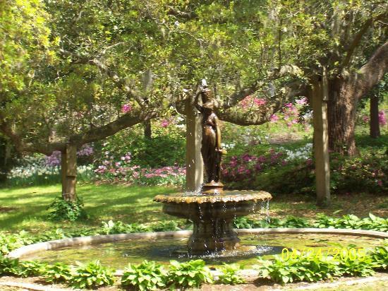 Airlie Gardens: pretty fountain