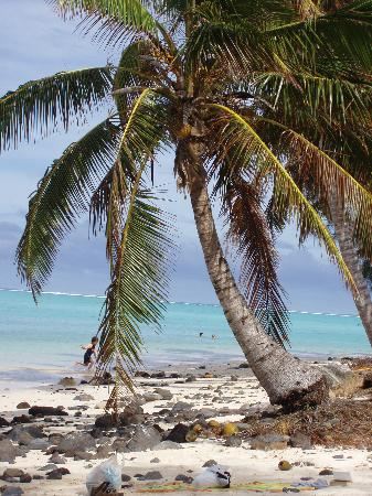 Northern Cook Islands, Cook Eilanden: Rarotonga