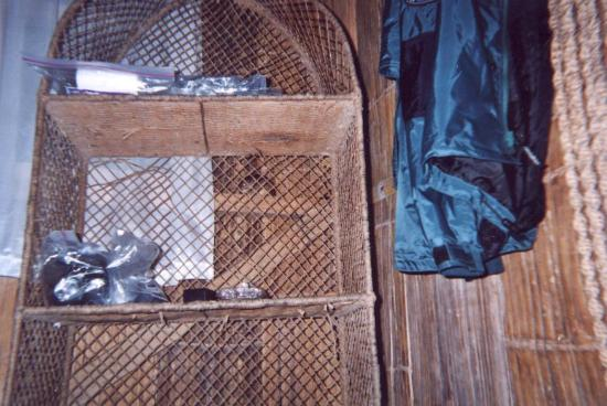Yuturi Lodge : Do you see the rat ? (behind the shelves, center of the picture)