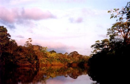 Yuturi Lodge : The nature is so beautiful