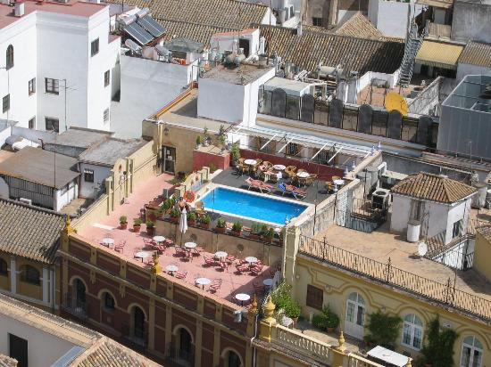 Hotel Dona Maria : Close up roof top pool