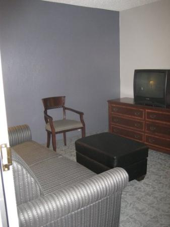 Holiday Inn Chicago-Carol Stream: Sitting Room as you entered